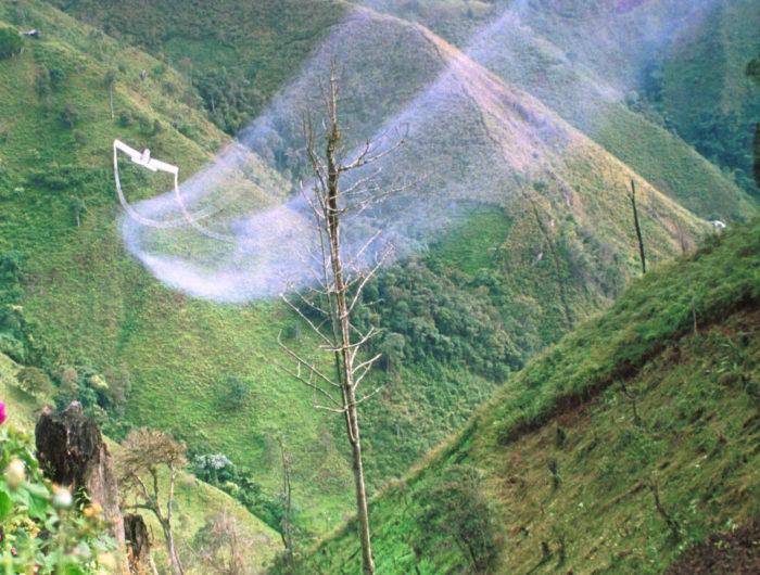 Los obispos del Pacífico y del Suroccidente dicen no a las fumigaciones, sí a la vida