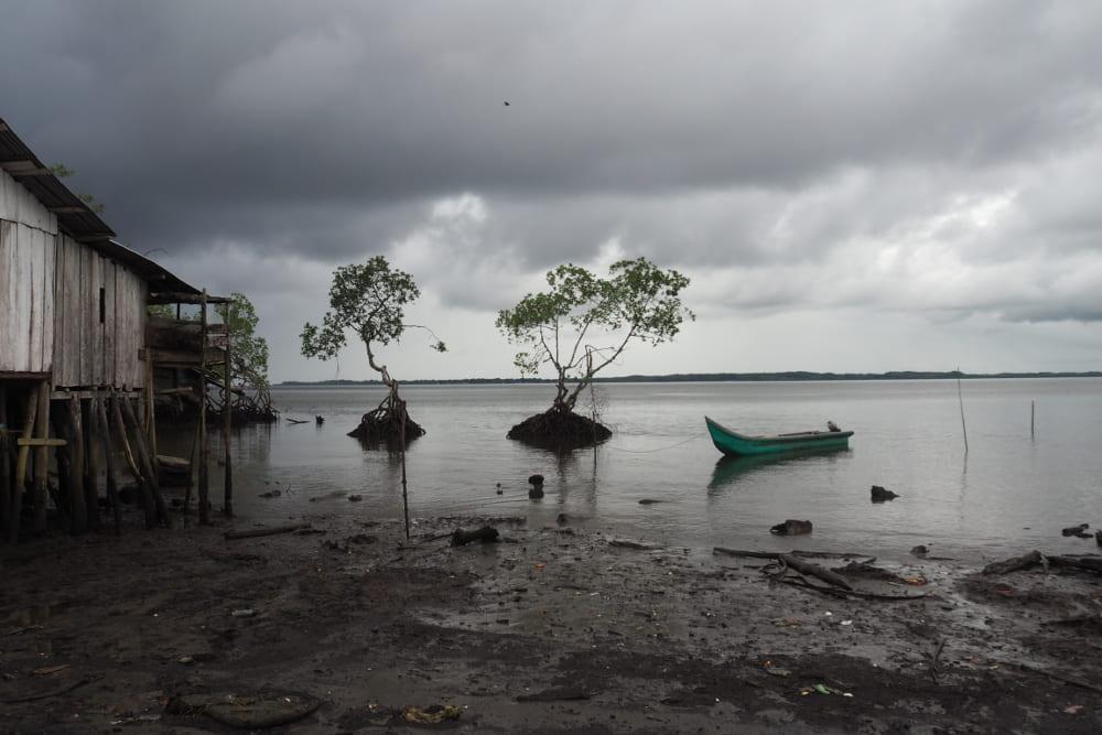 Región Pacífico: ¿Pacto para incumplir?