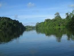 Río Baudó: entre la coca y el fuego