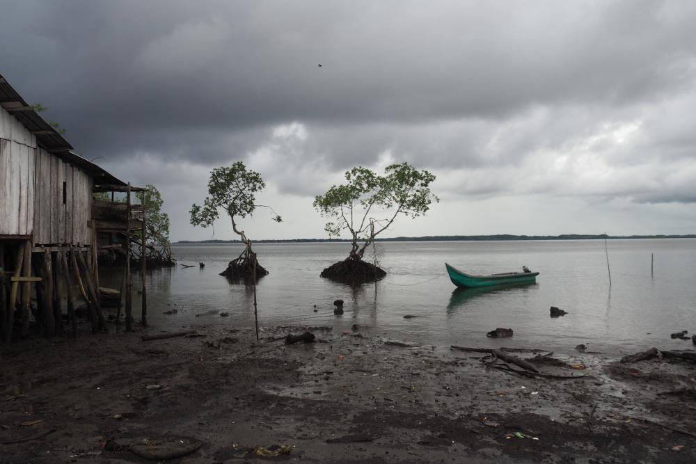 Avances en el proceso de esclarecimiento de la Costa Pacífica Caucana